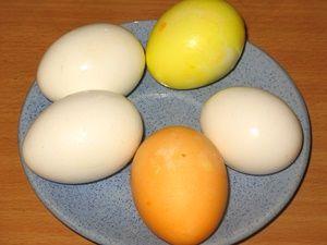 варёные яйца для нанесения термоэтикеток