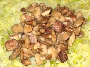 грибы в капусте