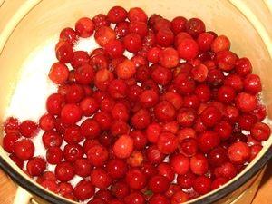 второй слой вишни для варенья