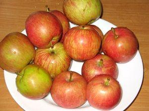 свежие яблоки на повидло