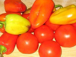 помидоры и перцы для лечо
