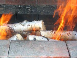 берёзовые дрова горят в мангале