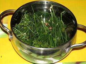 вода с зеленью для консервирования огурцов