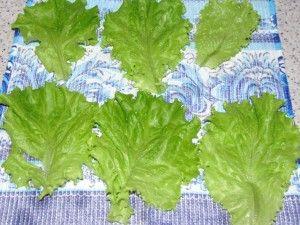 сушка листьев салата