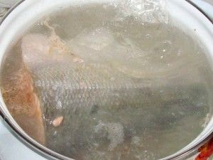 варка рыба